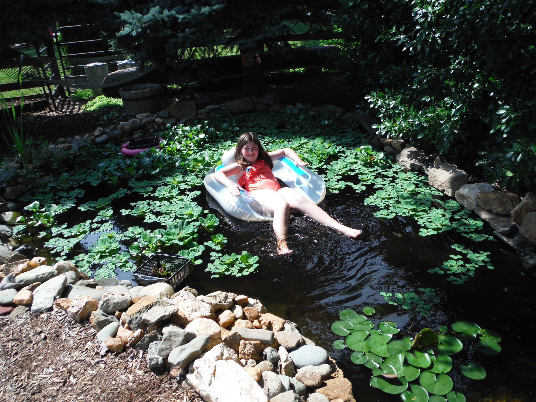 Pond Ecosystem Installation